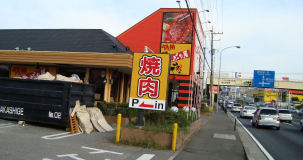 201005-hayamimi.2.jpg